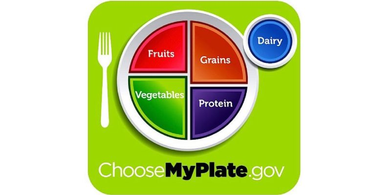 USDA logo choose my plate.gov Plate divided by fruits, grains, vegetables, protein, dairy